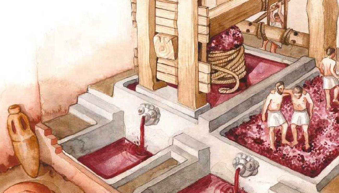 Le vin des Romains | Pour la Science