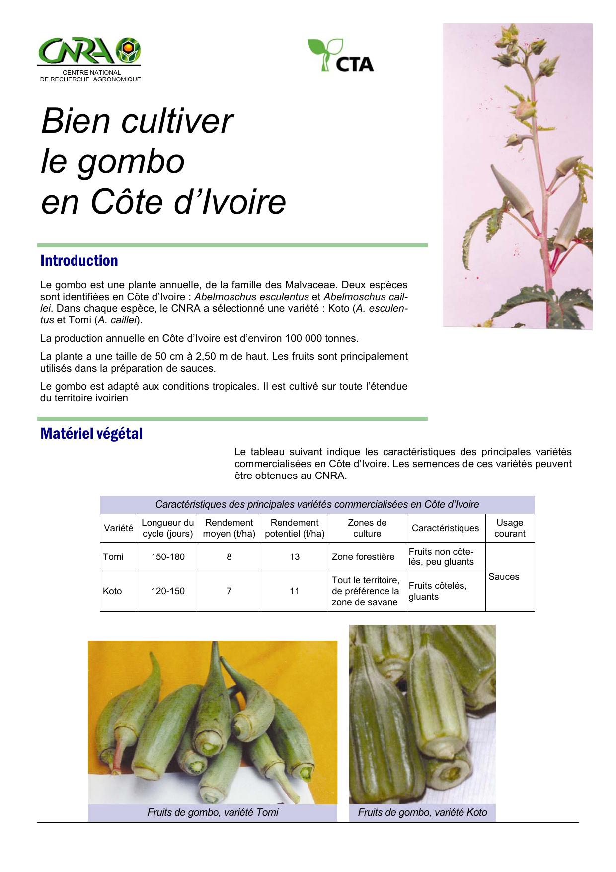 Bien cultiver le gombo en Côte d'Ivoire Introduction