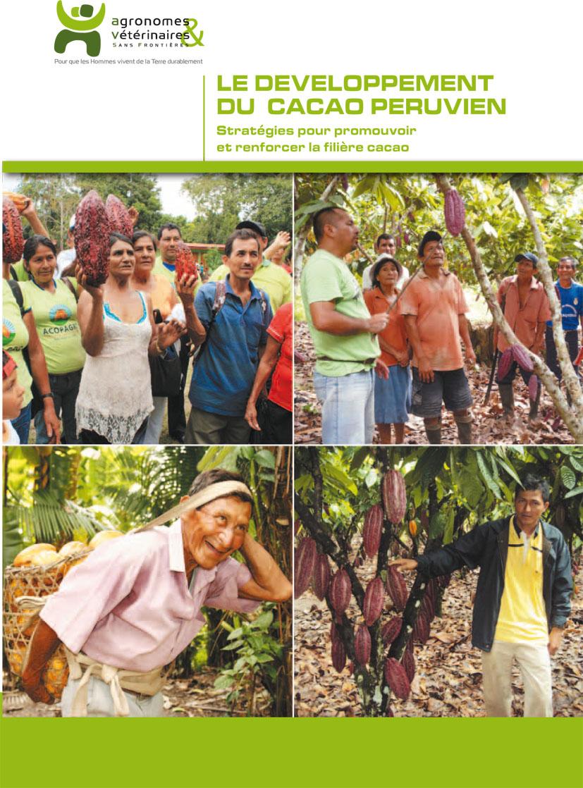 Le développement du cacao péruvien : stratégies pour ...