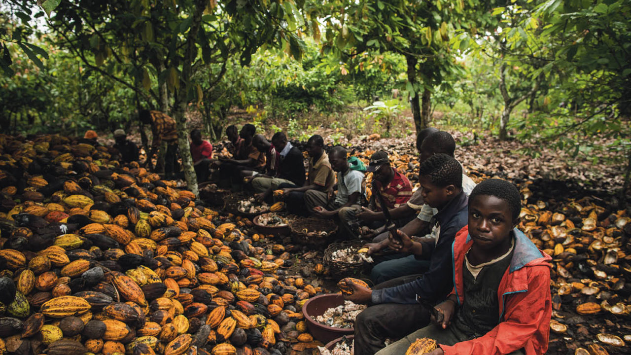 Child Labor and the Cacao Trade – the Dark Side of Chocolate ...