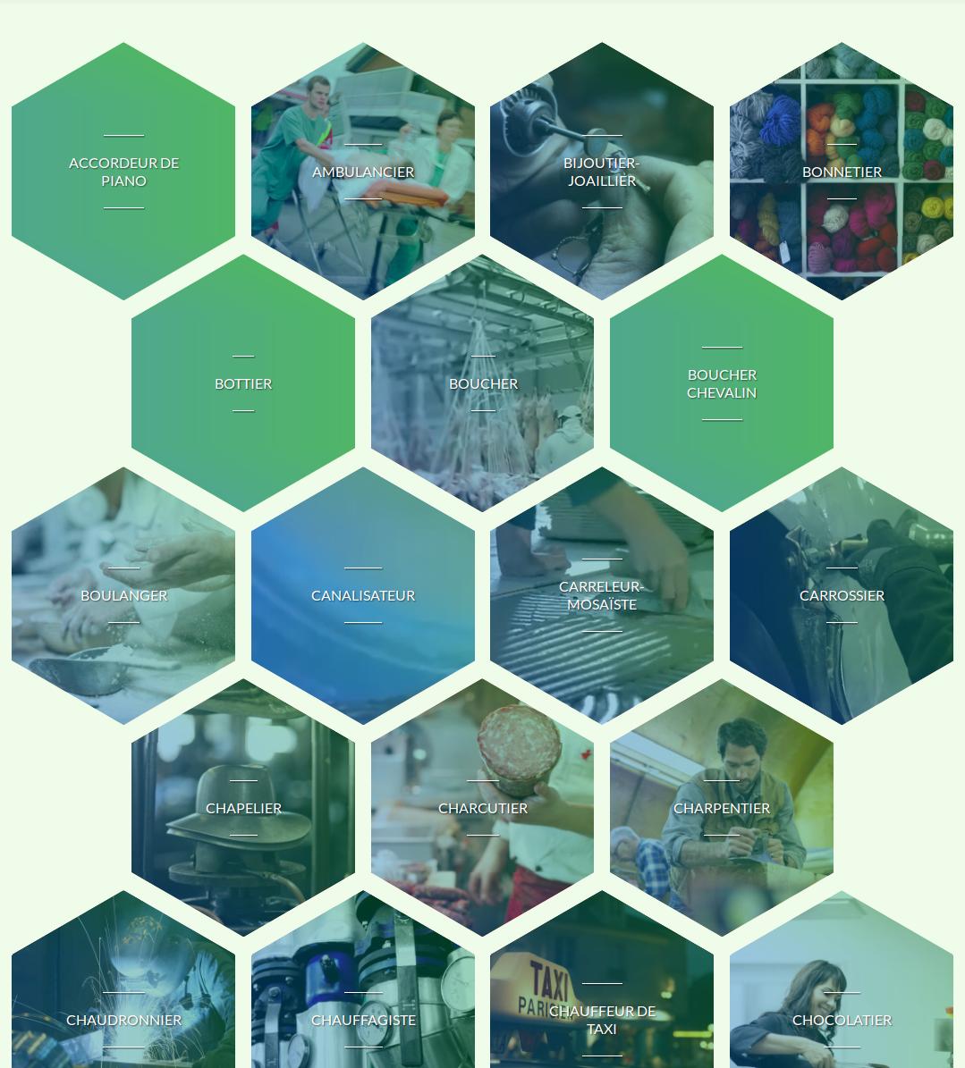 Choisir l'Artisanat : 250 fiches métiers et formations